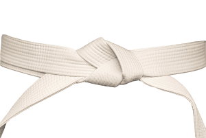 Lean Six Sigma White Belt Training Image