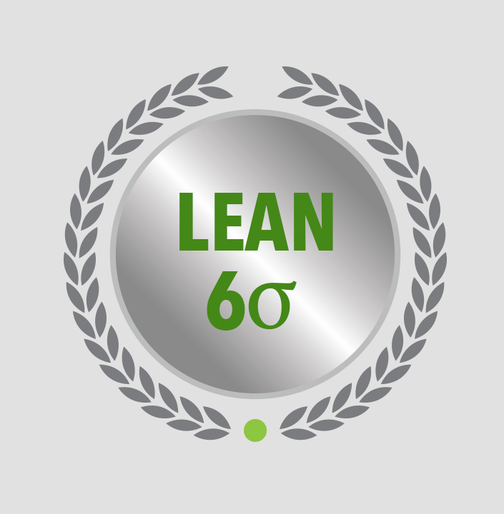 Lean Six Sigma Lifetime