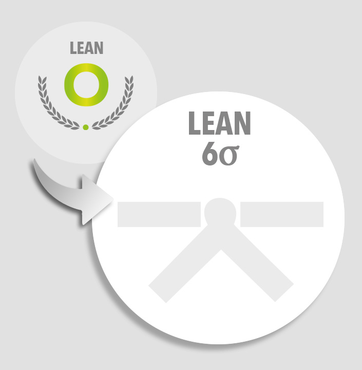 Upgrade lean overview to lean six sigma white belt