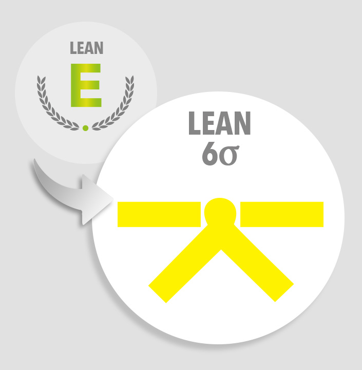 Upgrade lean expert to lean six sigma yellow belt