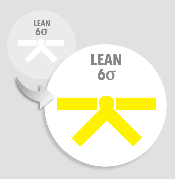 Upgrade lean six sigma white belt to lean six sigma yellow belt