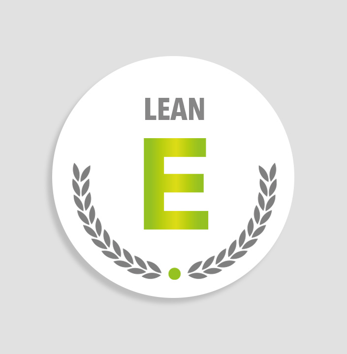 Lean Expert Training
